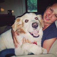 Jay & Jessica's dog boarding