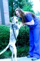 Feather, Furry &Reptile Pet Sitting dog boarding & pet sitting