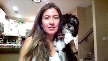 Bridlewood Dog Boarding. dog boarding & pet sitting