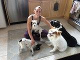 Responsible, loving home away dog boarding & pet sitting