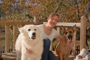 Sit 'n' Stay-cation dog boarding & pet sitting
