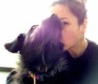 Lovin' for Your Sweet Dog dog boarding & pet sitting