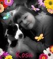 Rosie's House dog boarding & pet sitting