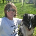 Puppy vacation on 4 acres! dog boarding & pet sitting
