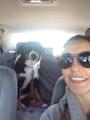 Maribel Dog Sitting & Boarding dog boarding & pet sitting