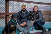 Cat & Bella's Doggie Social Club dog boarding & pet sitting