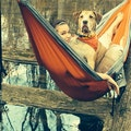 With Dogs All Things Are Pawssible dog boarding & pet sitting