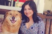 Jen & Jack's Pet Stay-cation dog boarding & pet sitting