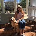Doggy Dream-cation dog boarding & pet sitting