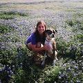 Puppy Retreat dog boarding & pet sitting