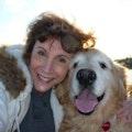 Big Paw Prints On My Heart dog boarding & pet sitting