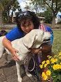 Rachelle's Northwood Petsitting dog boarding & pet sitting