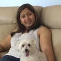 Sunny Paws Playland dog boarding & pet sitting