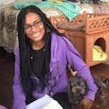 Small Dog Oasis dog boarding & pet sitting