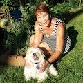 Cody's Canine Retreat dog boarding & pet sitting