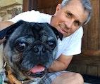 The PUG GARDEN dog boarding & pet sitting