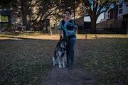 The martinez pup paradise dog boarding & pet sitting