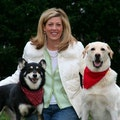 Bailey's Crossroads TLC 24/7 dog boarding & pet sitting