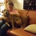 Cleveland Dog Lover dog boarding & pet sitting
