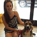Fetching Fido dog boarding & pet sitting