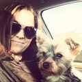 Safe and Loving Stay For Your Dog! dog boarding & pet sitting
