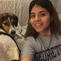 Silvia for Arlington/DC/surrounding dog boarding & pet sitting