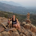 Wendy's Dog Destination dog boarding & pet sitting