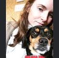 Boarding Bonanza by Gio & Bridget dog boarding & pet sitting