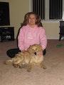 Happy Dog Country dog boarding & pet sitting