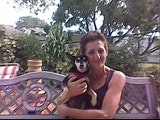 Missy - Dog Walker and Pet Sitter dog boarding & pet sitting