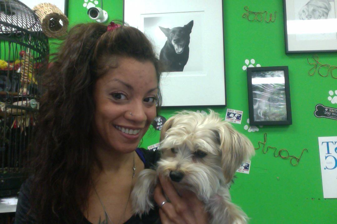 Kiana's dog day care