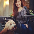 SF Play, All Dogs Welcome! dog boarding & pet sitting