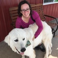 Sit and Travel with Angela dog boarding & pet sitting