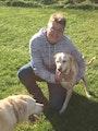 Steps to Harvard w/Fenced Yard dog boarding & pet sitting