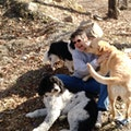 Hill Top Doggie Camp dog boarding & pet sitting