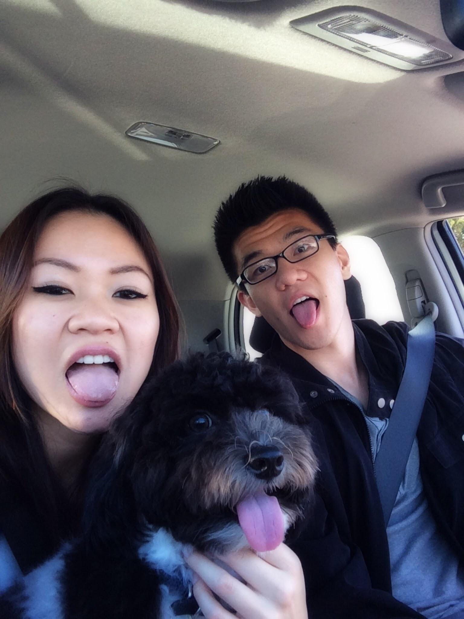 Xavier & Paulina's dog boarding