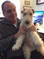 DC Puppy Love! dog boarding & pet sitting