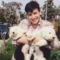 Canine Companion dog boarding & pet sitting