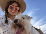 Mimi's boho pup retreat dog boarding & pet sitting