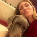 Boarding, daycare, walk, pick up/dr dog boarding & pet sitting
