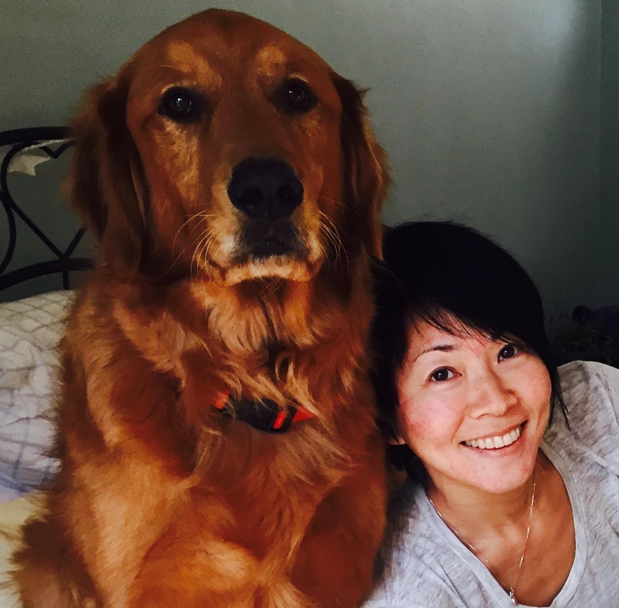 Yvette's dog boarding
