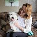 Einstein's Echo Park Playhouse dog boarding & pet sitting