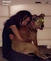Friendly loving animal sitter! dog boarding & pet sitting