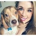 Kaitlyn's Dog Haven dog boarding & pet sitting