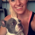 Loving Care for Mans Best Friend dog boarding & pet sitting