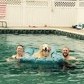 The Cooper Inn dog boarding & pet sitting