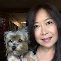 Tammy's Pooch Resort dog boarding & pet sitting
