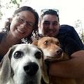 Emma's Happy Dogs dog boarding & pet sitting