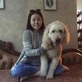Doggy on Vacation! dog boarding & pet sitting