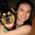 Kara's Dog Boarding. A Play-cation! dog boarding & pet sitting